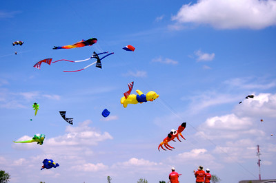 19th Jamestown Kite Festival