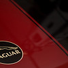Jaguar essential
