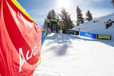 2014 Nature Valley U.S. Alpine Championships