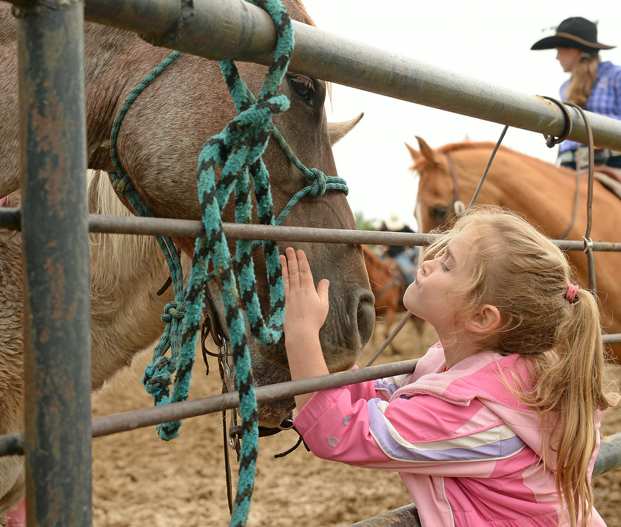 Four-year-old Callie Cox greets a horse tied to the fence during the Elks Youth Rodeo Saturday at the Sheridan County Fairgrounds. The Sheridan Press|Justin Sheely.