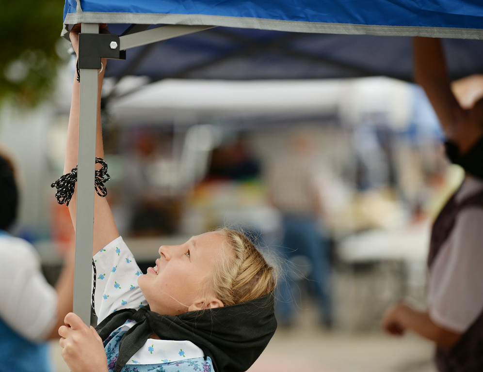 Eleven-year-old Monique Walter of Lodge Grass, Montana, raises a canopy with her family during setup for the Farmer's Market Thursday on Grinnell Street. The Sheridan Press|Justin Sheely.