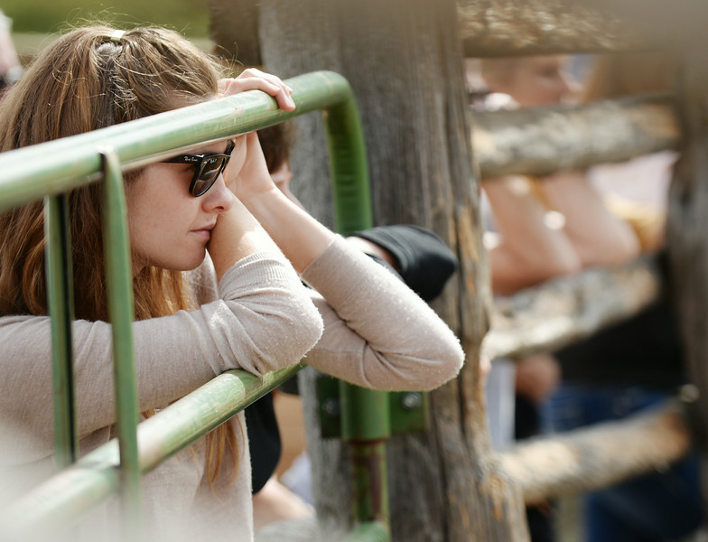 Katie Belton watches horse trainer Gus Whitelaw demonstrates starting an unbroken horse Wednesday at the Brinton Barn on the Quarter Circle A Ranch near the Brinton Museum. The Sheridan Press|Justin Sheely.