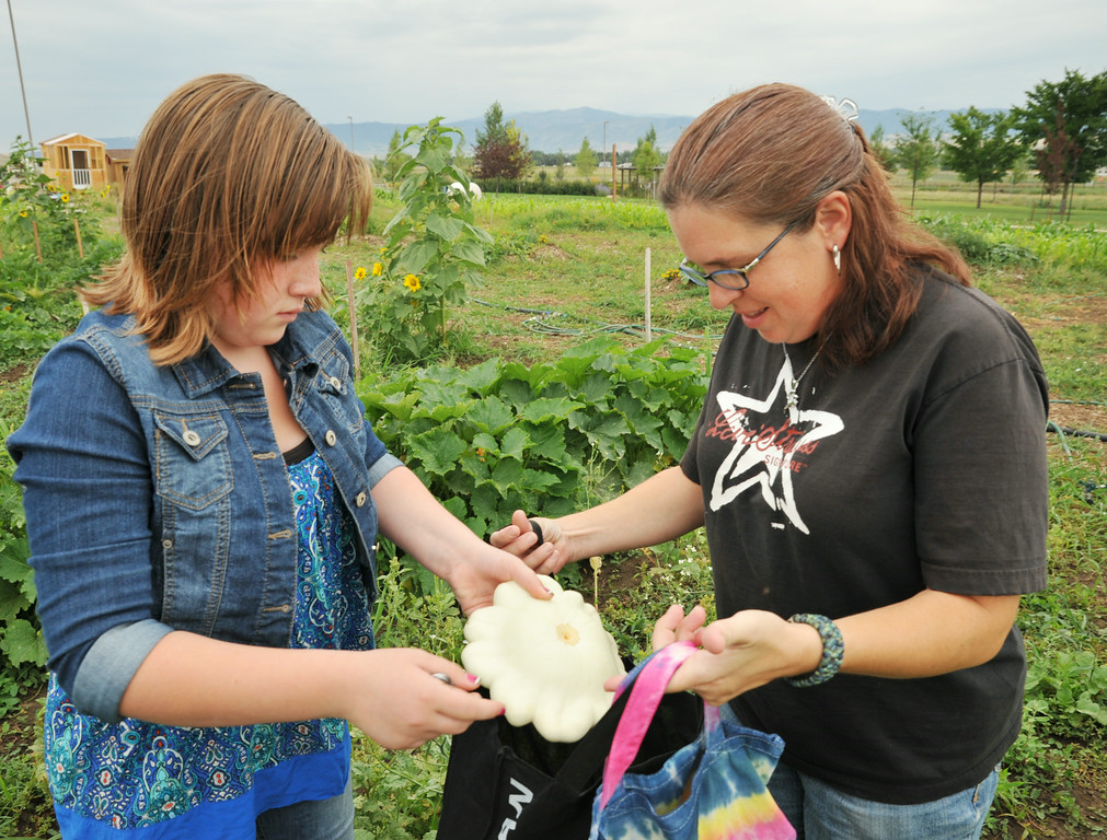 Twelve-year-old Hylan West places a pattypan squash into a bag held by Jennifer West during the Youth Garden Harvest Thursday at Sheridan College. The Sheridan College Agriculture Students, Pre-Professional students, contributed the youth garden with collaboration by other community gardeners who opened most of the community garden for the youth garden harvest this year at no cost to the children and their families. Those involved with building the garden credits community gardener Bruce Sprenger as instrumental in the success of the garden through the donation of his time, labor, and seasoned advice. Children from the community have been visiting the garden throughout the summer to check on the progress of the produce and to engage in educational activities provided by the college students. The Sheridan Press|Justin Sheely.