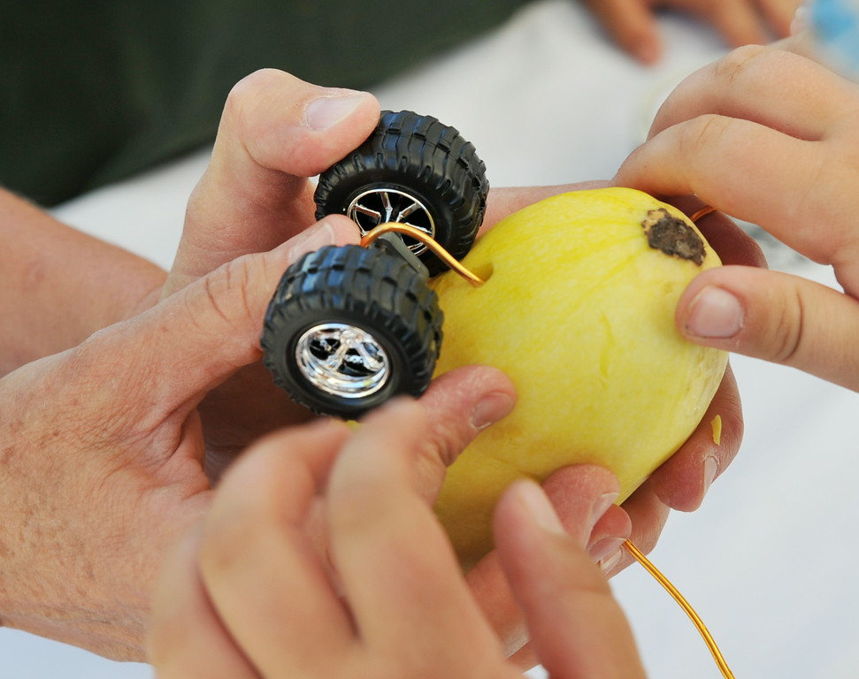 A toy wheel set is tied to a zucchini with wire for the zucchini races during the Farmer's Market Thursday evening on Grinnell Street. A spin on the traditional pinewood derby, children were invited to decorate zucchinis and tie on a set of wheels for the race. The Sheridan Press|Justin Sheely.