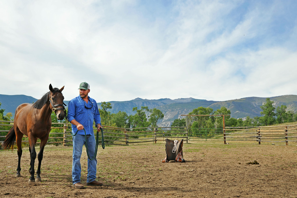 Horse trainer Gus Whitelaw of St. Louis, Missouri, demonstrates starting an unbroken horse Wednesday at the Brinton Barn on the Quarter Circle A Ranch near the Brinton Museum. The Sheridan Press|Justin Sheely.
