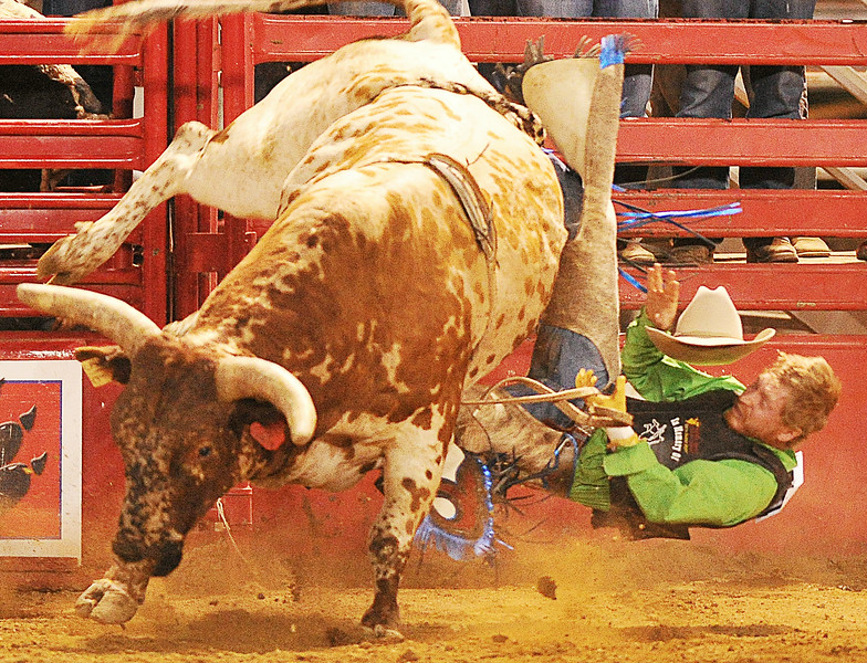 Miles Kehr tumbles off in the bull riding event during the Sheridan County Rodeo Saturday night at the Sheridan County Fairgrounds arena. The Sheridan Press Justin Sheely.