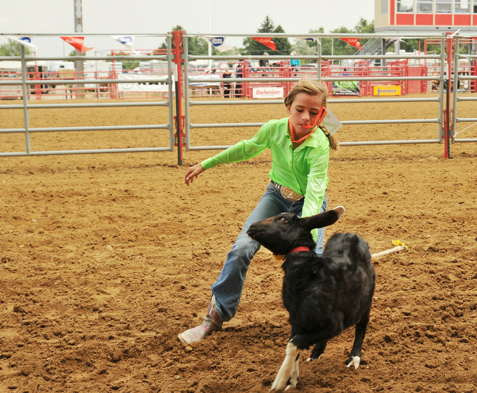 Tavy Leno approaches a goat in the goat tail tying event Saturday afternoon during the Sheridan County Rodeo at the Sheridan County Fairgrounds arena. The Sheridan Press|Justin Sheely.