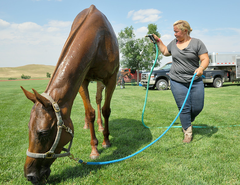 Ariel Mazur of Massachusetts sprays water over a horse after a polo player changed horses during the early afternoon game Thursday at the Flying H Polo Club. Mazur is part of the grooming team to prepare horses for the players during a polo game. The Sheridan Press Justin Sheely.