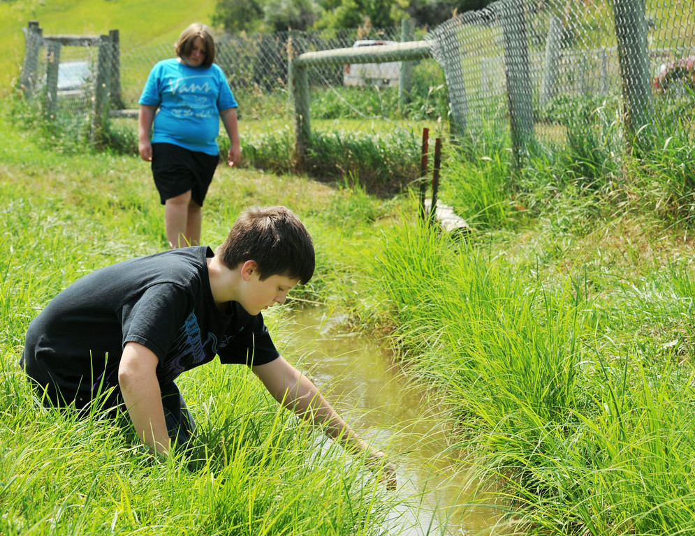 Ten-year-old Cash Nelson searches for crawdads in an irrigation ditch Friday at Sheltered Acres Park. The park at the end of Emerson Street is a popular place for children to hunt for critters including snakes. The Sheridan Press|Justin Sheely.