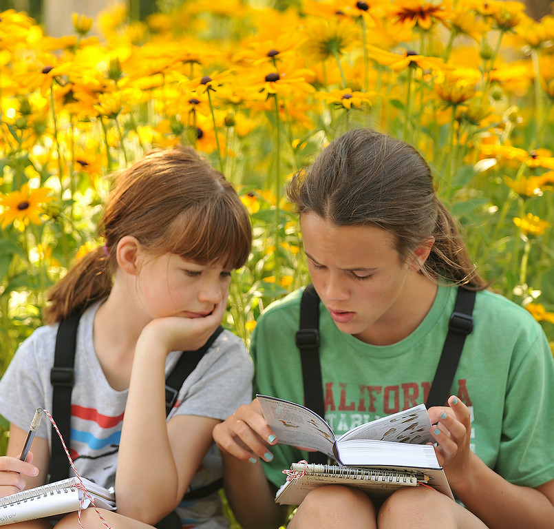 Nine-year-old Ella Hubert, left., and Adelle Welch, 11, look through their bird reference books during a Science Kids birding trip to the Padlock Ranch Thursday in Dayton. The students exercised birding skills and installed bird boxes on the ranch before hitting the Dayton Pool to beat the heat. The Sheridan Press|Justin Sheely.