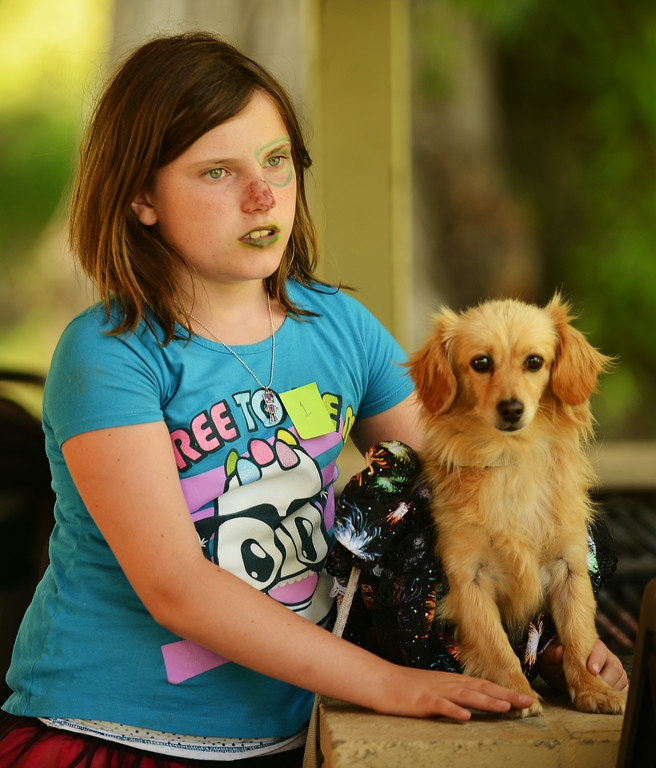 Eleven-year-old Ivy Dearcorn waits with her dog Bear as contestants arrive before the Pet Parade during the 38th annual Dayton Days Friday evening at Scott Park in Dayton. The Sheridan Press|Justin Sheely.