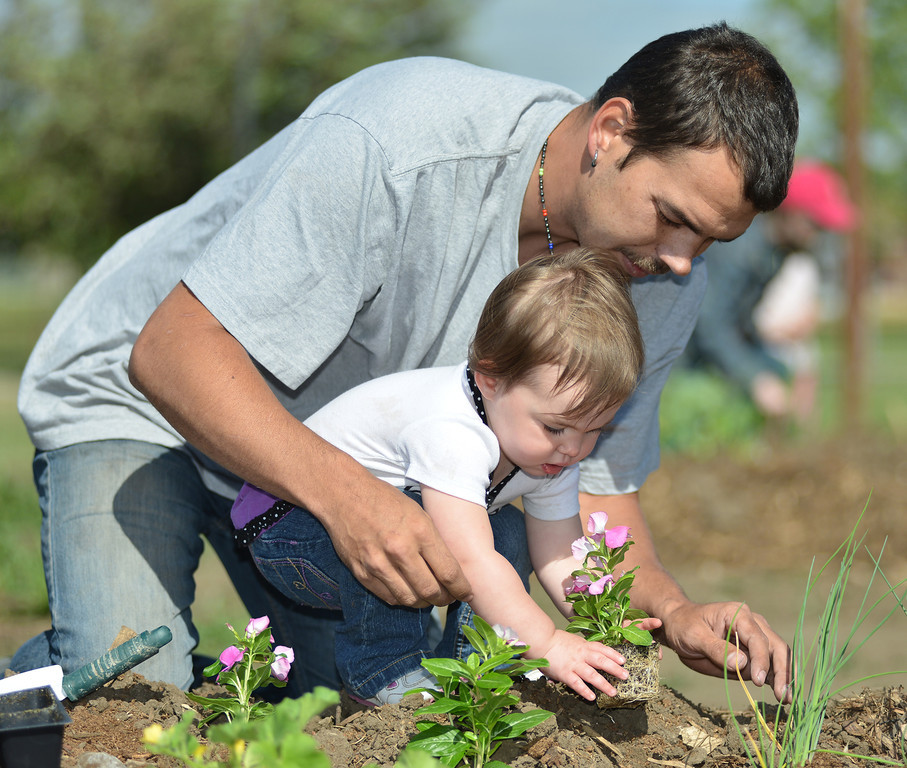 Wayne Reno helps his daughter Tayhanee Shri Joy Reno, 2, plant flowers at the Sheridan College Youth Garden Thursday morning. The Sheridan College Agriculture department invited the community to plant a garden and will have the children return July 17 to see the progress of the garden and learn about garden bugs. Harvest will begin August 14.