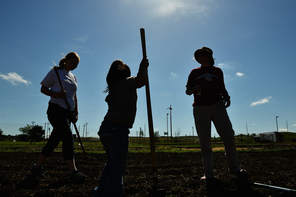 Youth work under the sun to plant vegetable seeds in the Sheridan College Youth Garden Thursday morning. The Sheridan College Agriculture department invited the community to plant a garden and will have the children return July 17 to see the progress of the garden and learn about garden bugs. Harvest will begin August 14.