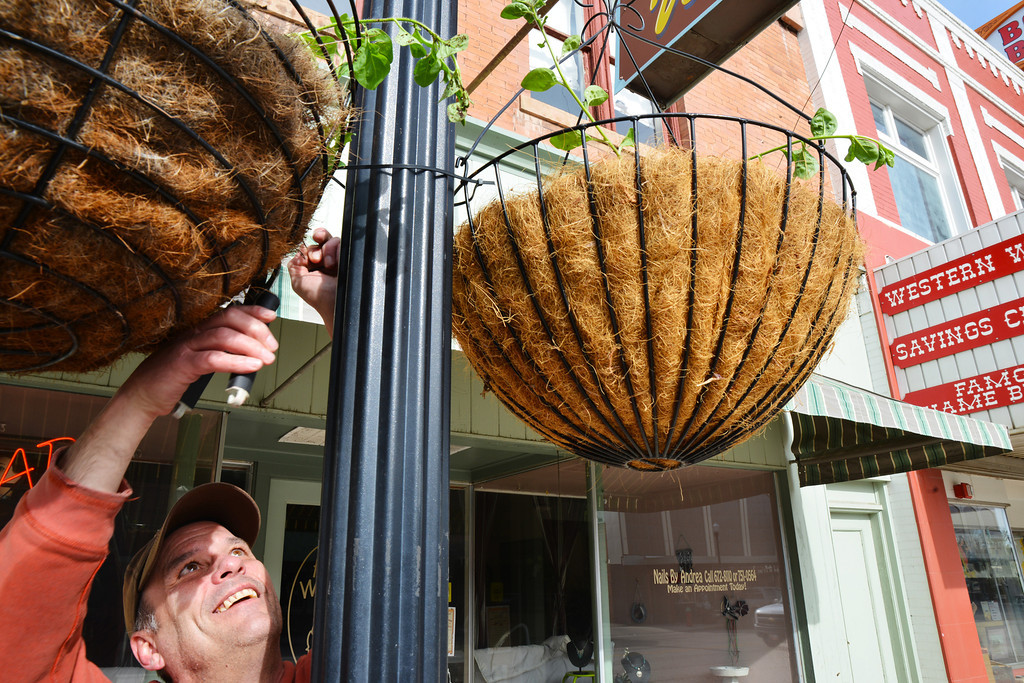 Volunteer Evan Jones snips off the ends of plastic zip ties to help stabilize the baskets during strong winds Sunday morning on Main Street. The DSA and volunteers hung 155 flowering baskets on the lampposts along Main from Burkitt to 5th street. The baskets will remain through the summer until the end of October.