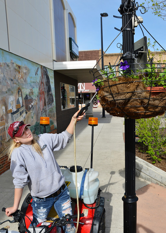 Lacey Fisher of the DSA waters a set of hanging baskets Sunday on Grinnell Street. The DSA and volunteers hung 155 flowering baskets on the lampposts along Main from Burkitt to 5th street. The baskets will remain through the summer until the end of October.