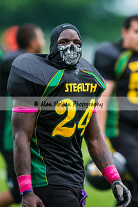 stealth201414841