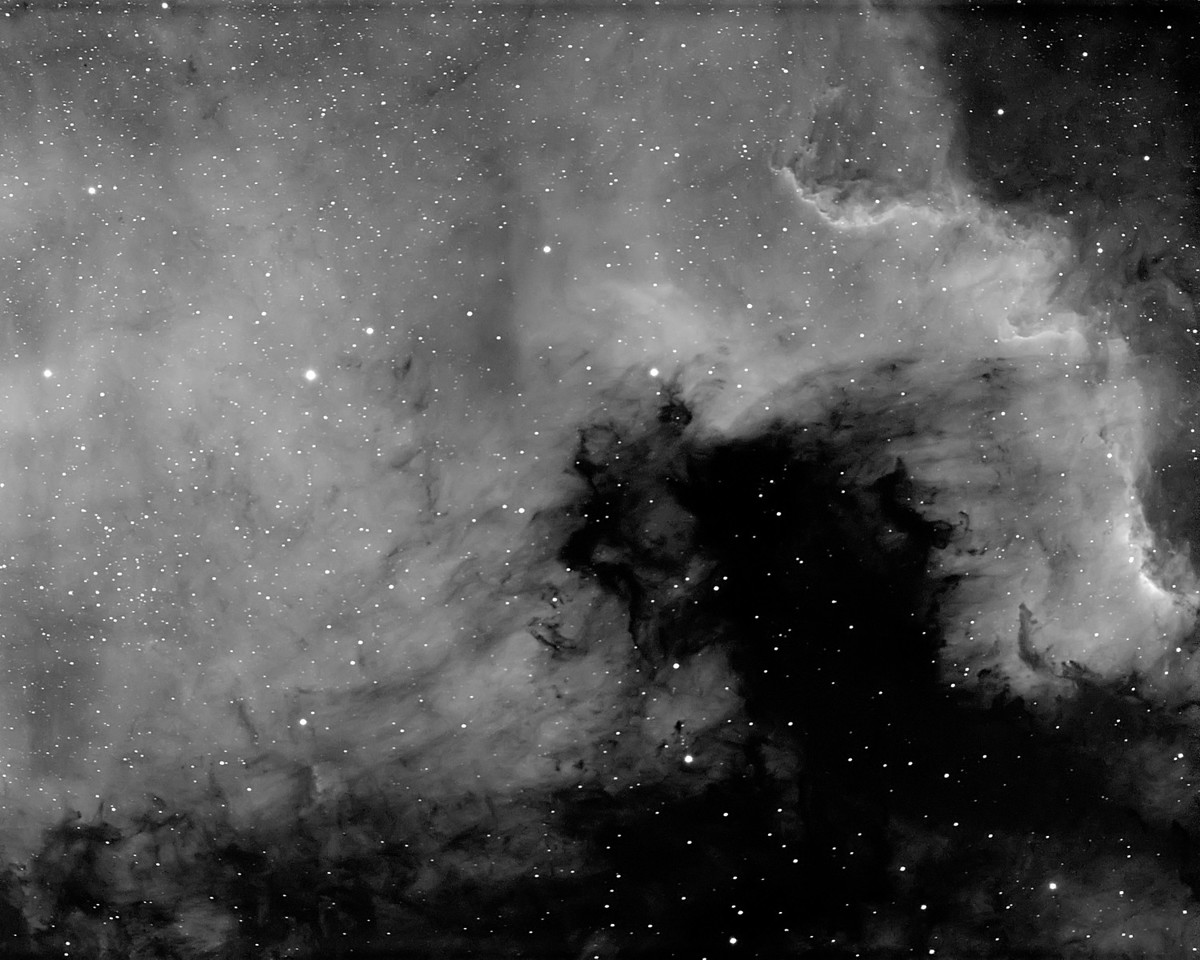The North American Nebula (NGC7000). The shot represents 10x10min exposures using a 5nm Astrodon Ha filter. Processing was done with PixInsight and Photoshop CS6. The capture sequence was done using an Orion ED80t CF Triplet at F/6, and a Atik 460ex CCD camera.