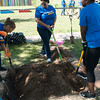 A team of volunteers from Progressive Insurance dug 4 new beds for a Head Start after school facility