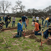 A team of volunteers from IBM cleaned up 6 existing beds and built 6 new raised beds at the State Supported Living Center