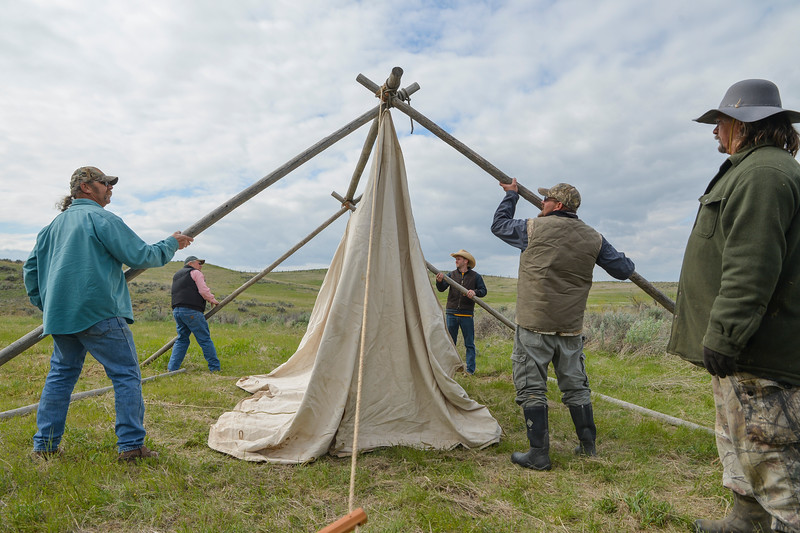 Justin Sheely | The Sheridan Press<br /> Men build a canvas wall tent during the Ed Green Memorial Rifle Frolic / Black Powder Shoot Friday at the Dannar Ranch north of Sheridan. The weekend-long event is an annual tradition honoring black powder gun enthusiast Ed Green. The events include shooting matches, quail walks, cooking competitions, and egg hunts for the kids. The group celebrate early 1800 s era life by cooking over campfires, dressing in period clothing and shooting black powder rifles.