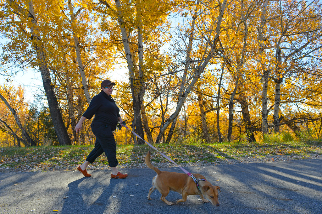 Justin Sheely | The Sheridan Press<br /> Lisa Winters walks her dog Molly up the pathway Wednesday morning at Kendrick Park.