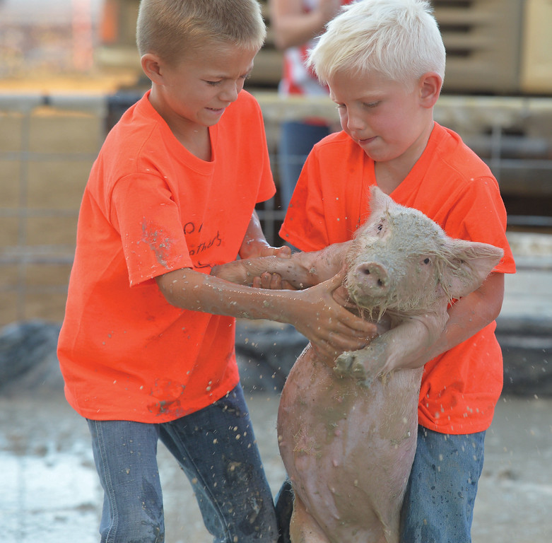 Maclane Moore, right, and Hank Osborne try to lift a pig into the bucket during the Sheridan County Fair pig wrestling contest Saturday at the Sheridan County Fairgrounds Arena. <br /> Mike Dunn | The Sheridan Press