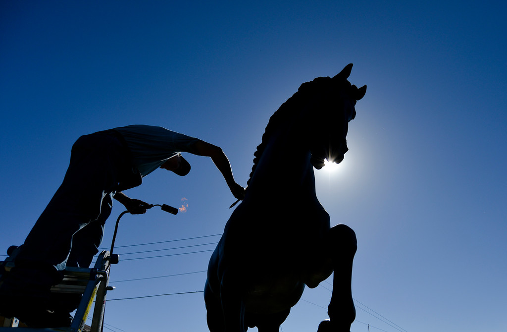 Justin Sheely | The Sheridan Press<br /> Dave DeDecker, Sculpture Services of Colorado, applies a conservator's wax to Da Vinci's Horse Saturday outside the Downtown Sheridan Association building on the corner of Coffeen and Main Street. DeDecker cleans and preserves the city of Sheridan's public art sculptures every year.