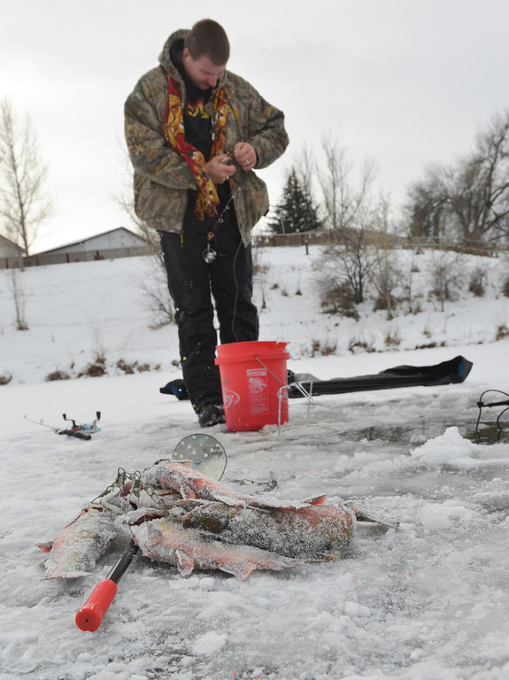 Justin Sheely | The Sheridan Press<br /> Ice fisher Larry Longland makes a catch Saturday morning at Sam Mavrakis Pond in Sheridan.