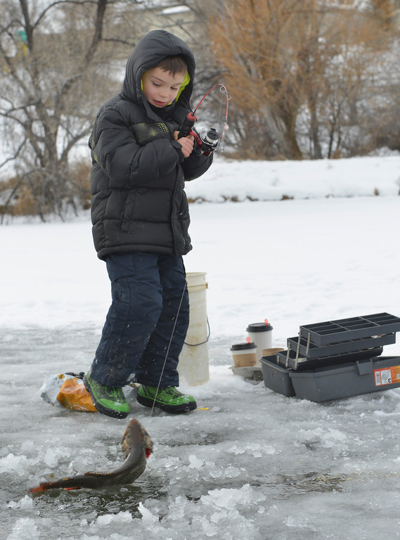Justin Sheely | The Sheridan Press<br /> Five-year-old Noah Balkenbush makes a catch during ice fishing with the family Saturday morning at Sam Mavrakis Pond in Sheridan.