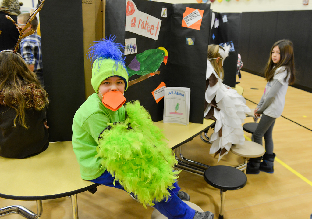 Justin Sheely | The Sheridan Press<br /> First-grader Colt Jolovich, as a parakeet, waits for a visitor during the Animal Wax Museum Wednesday at Woodland Park Elementary School. Each student picked an animal, did their own research and compiled facts for their projects. The students created their poster boards and dressed as their animals to present their research to parents, teachers, faculty, students and other visitors during Wednesday's event.