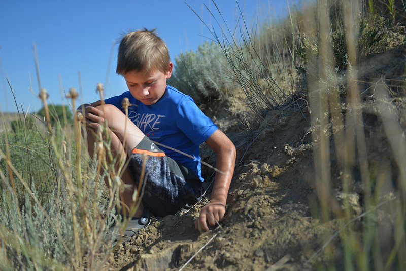 Justin Sheely | The Sheridan Press<br /> Eight-year-old Zach Peterson scrapes away at a rock during Science Kids' Rock Talk Wednesday at the Welch Recreation Area off Decker Road. The students learned about the geology of the the Powder River Basin and the Bighorn Mountains, and how it affected the history of humans in the area during the week-long program. Rock Talk is one of many educational programs offered by Science Kids, a nonprofit that makes science learning fun for youth.