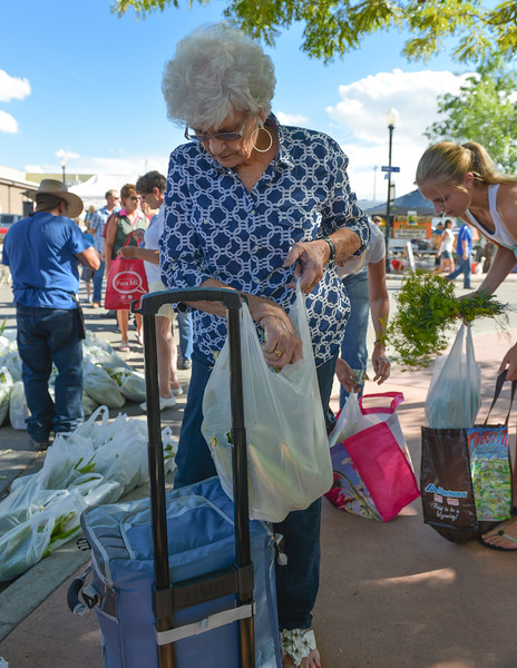 Justin Sheely | The Sheridan Press<br /> Maedean Reed stores her corn into a cooler during the Famers Market Thursday on Grinnell Plaza.