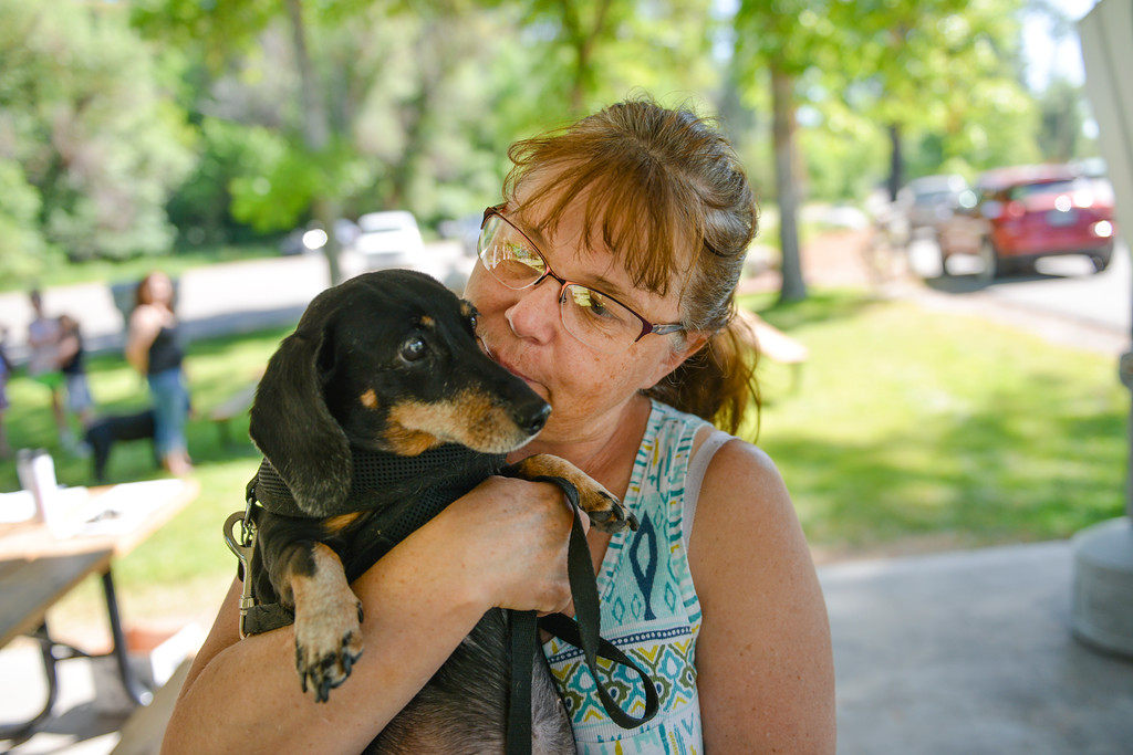 Justin Sheely | The Sheridan Press<br /> Lynn Olsen holds her fourteen-year-old Daschund Suzie during the Dog and Cat's rabies clinic Friday at Kendrick Park. Friday was the last day of the clinic for the community to bring in their dogs and cats for discounted rabies vaccinations.