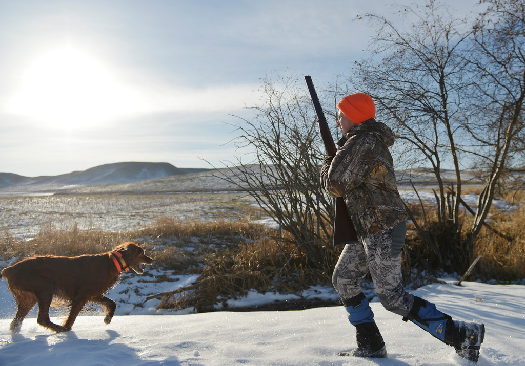 Justin Sheely | The Sheridan Press<br /> Twelve-year-old Evan Feck walks across the snow with a friend's hunting dog during the Youth Pheasant Hunt Saturday morning at Fort Phil Kearny State Historic Site. The weekend-long event was to introduce youth to pheasant hunting for free.