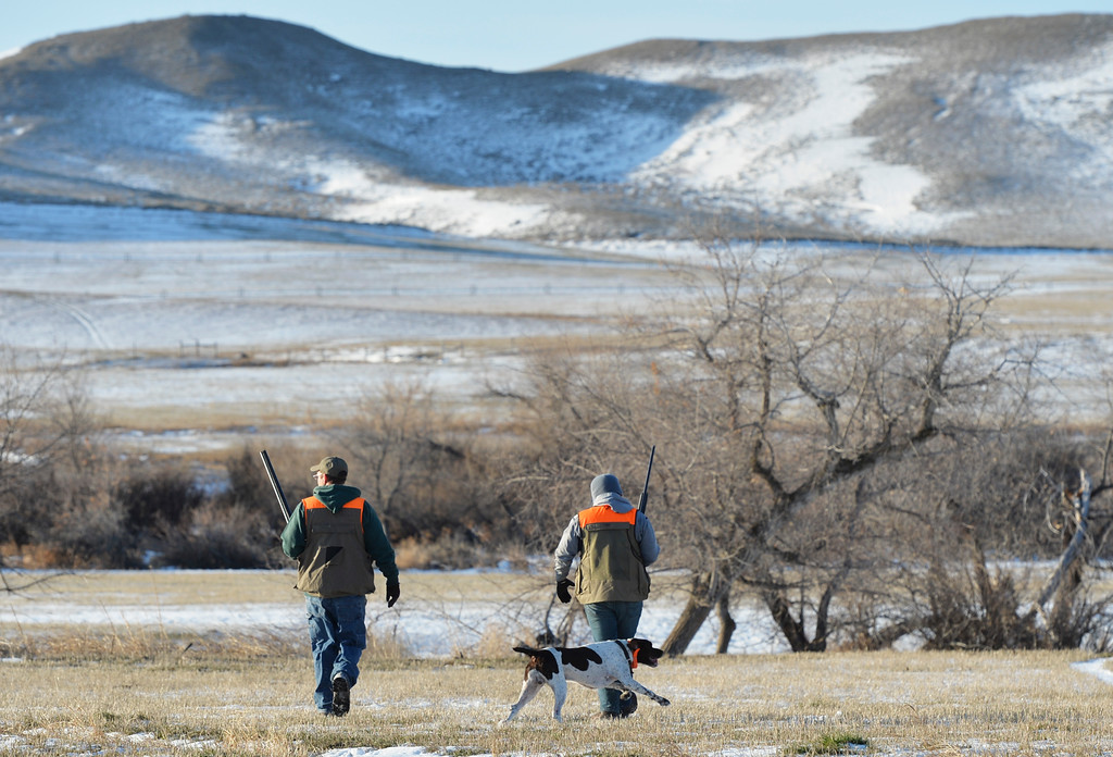 Justin Sheely | The Sheridan Press<br /> Hunters march across the snowy landscape during the Youth Pheasant Hunt Saturday morning at Fort Phil Kearny State Historic Site. The weekend-long event was to introduce youth to pheasant hunting for free.