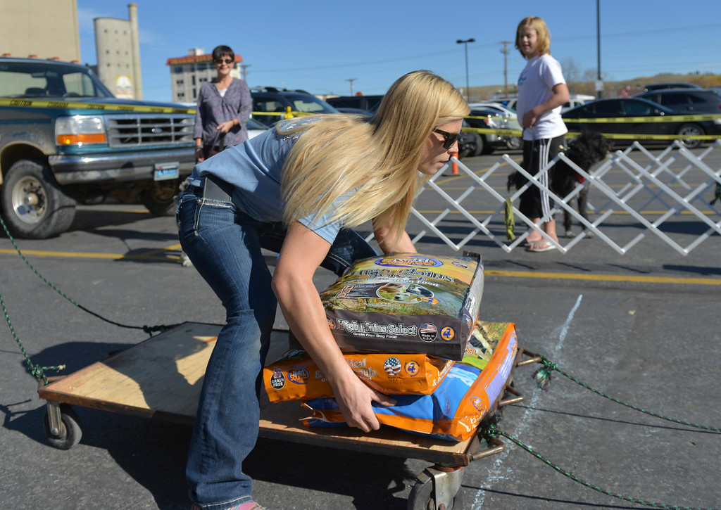 Justin Sheely | The Sheridan Press<br /> Kayla Wilbanks puts bags of dog food on the wagon during the fourth-annual Dog Weight Pull contest Saturday at Muddy Paw Prints Pet Supply.