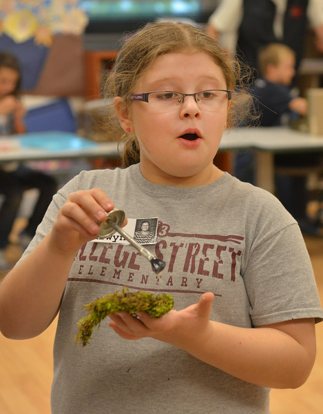 Justin Sheely | The Sheridan Press<br /> Fourth-grader Arwyn Immell applies glue some moss for her diorama project during an after school program Wednesday at Coffeen Elementary School. The activity was lead by Joey's Flyfishing as part of a 6-week course, twice a week. The nonprofit organization had previously took the students to a local pond to learn about fish habitat and the students gathered materials to use for their diorama projects to illustrate the ecology.