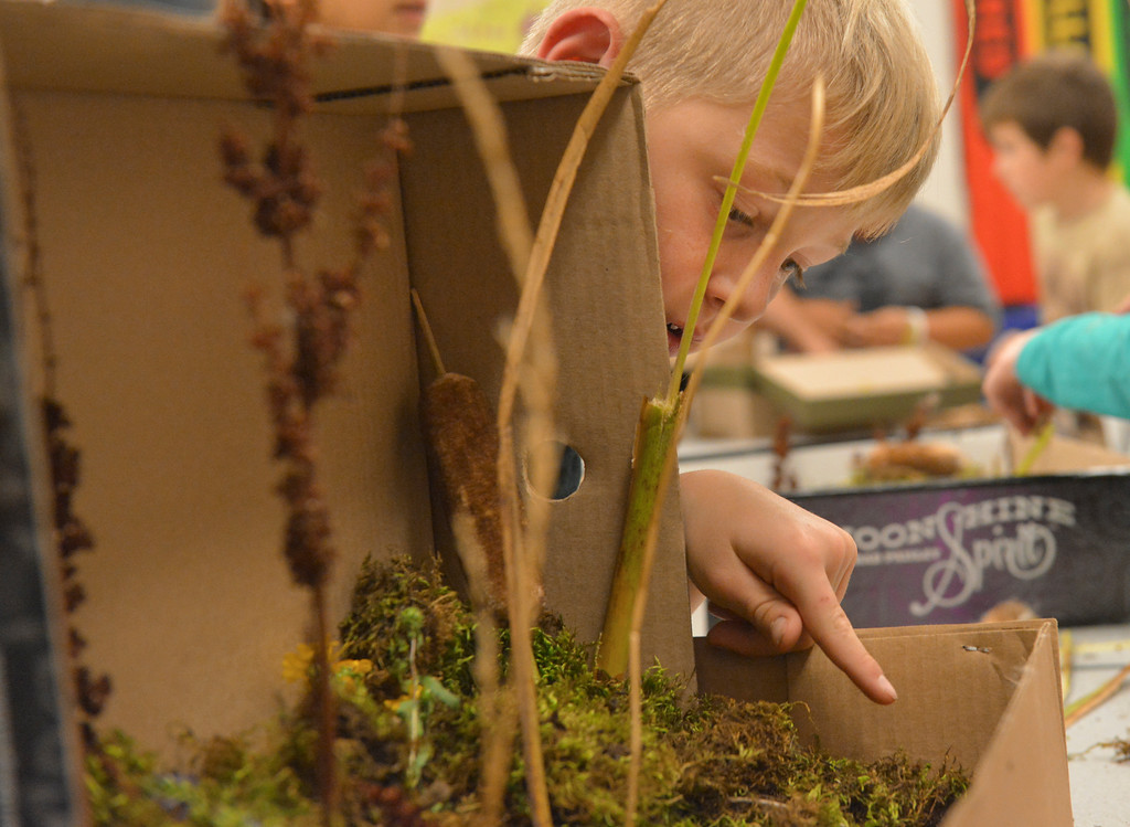 Justin Sheely | The Sheridan Press<br /> Fourth-grader Lake Sheeley points to a bug found in another student's diorama during an after school program Wednesday at Coffeen Elementary School. The activity was lead by Joey's Flyfishing as part of a 6-week course, twice a week. The nonprofit organization had previously took the students to a local pond to learn about fish habitat and the students gathered materials to use for their diorama projects to illustrate the ecology.