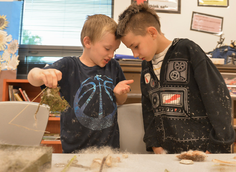 Justin Sheely | The Sheridan Press<br /> Third-graders skyler Chase, left, and Joey Allen get in a bit of a mess as they work on their diorama during an after school program Wednesday at Coffeen Elementary School. The activity was lead by Joey's Flyfishing as part of a 6-week course, twice a week. The nonprofit organization had previously took the students to a local pond to learn about fish habitat and the students gathered materials to use for their diorama projects to illustrate the ecology.