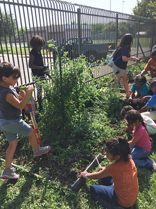 Working with kids in after school and summer programs at Austin Recreation Centers.