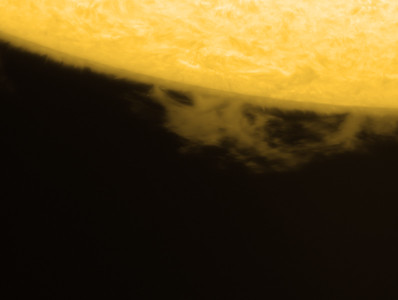 Prominence on the western limb