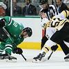 Stars vs Bruins (134)