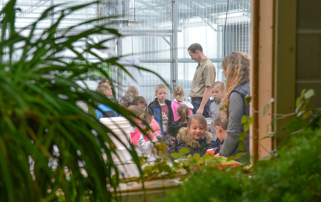 Justin Sheely | The Sheridan Press<br /> Coffeen Elementary first-grade students visit Holly Seed during a field trip Friday morning. Students toured the greenhouse and planted cucumber seeds into pots to bring back to their classrooms.