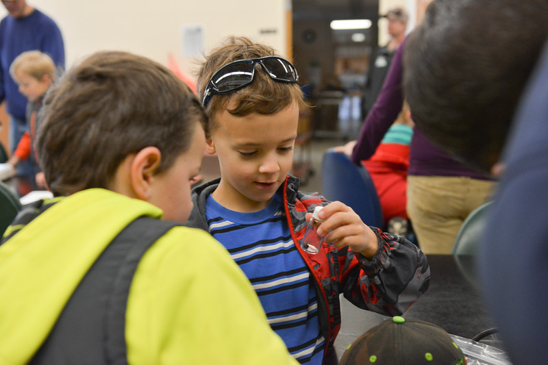 Justin Sheely | The Sheridan Press<br /> Seven-year-old Luke Rankin looks at insects captured earlier during Science Saturday at the Sheridan College Science Center. The group ventured to a nearby natural area to collect insects and take a closer look under microscopes.