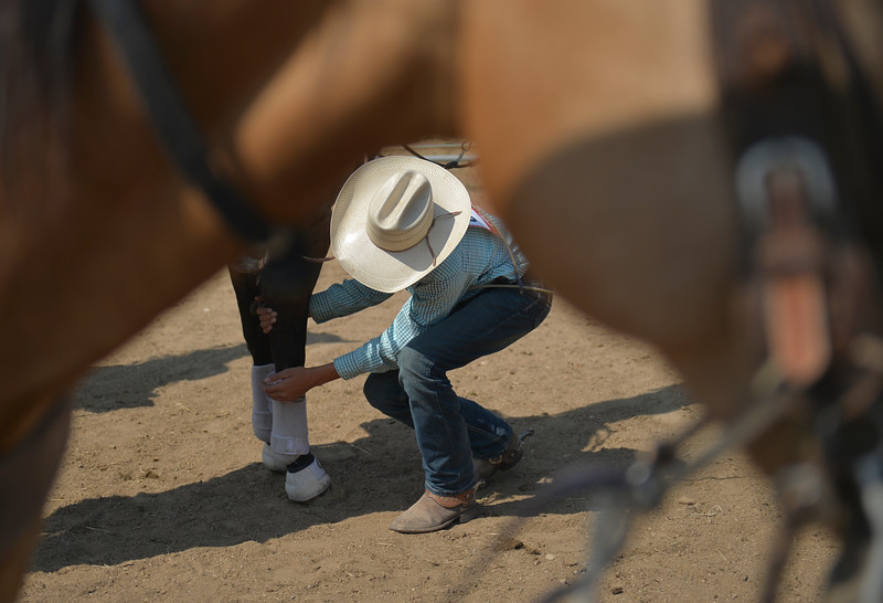 Justin Sheely | The Sheridan Press<br /> A competitor wraps the ankles of his horse during the Sheridan Elks Youth Rodeo Saturday at the Sheridan County Fairgrounds.