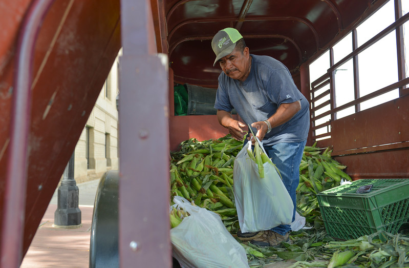 "Justin Sheely | The Sheridan Press<br /> Valente ""Speedy"" Ramirez of Harden, Montana, prepares sacks of corn during the weekly farmers market Thursday afternoon on Grinnell Plaza."