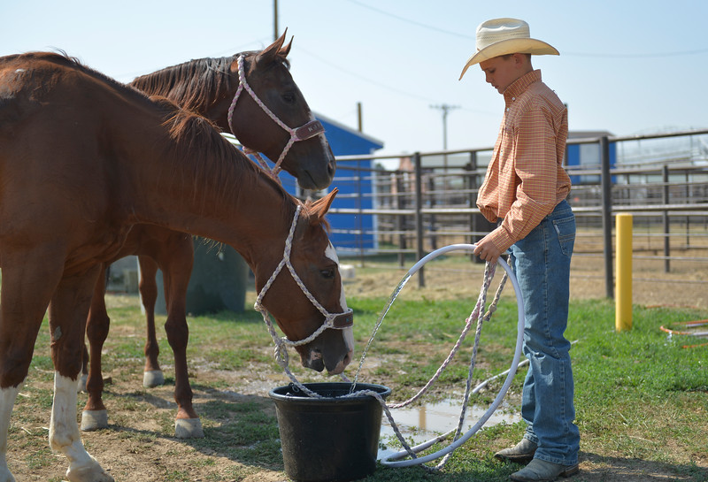 Justin Sheely | The Sheridan Press<br /> Garrett Jefferson of Las Vegas, Nevada, pours water for his horses during the Sheridan Elks Youth Rodeo Saturday at the Sheridan County Fairgrounds.