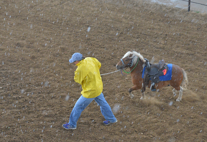Justin Sheely | The Sheridan Press<br /> A Sara Mefford leads her pony to shelter as rain pours down during the Sheridan Cowgirls Association Rodeo Thursday at the Sheridan County Fairgrounds. The rodeo was cut short after the thunderstorm dumped rain and hail.