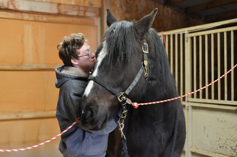 Justin Sheely | The Sheridan Press<br /> Matthew Elkins-Graham brushes his favorite horse Wednesday at CHAPS Equine Assisted Therapy east of Sheridan. The nonprofit is one of several organizations that received grants from the Wyoming Community Foundation earlier this month.