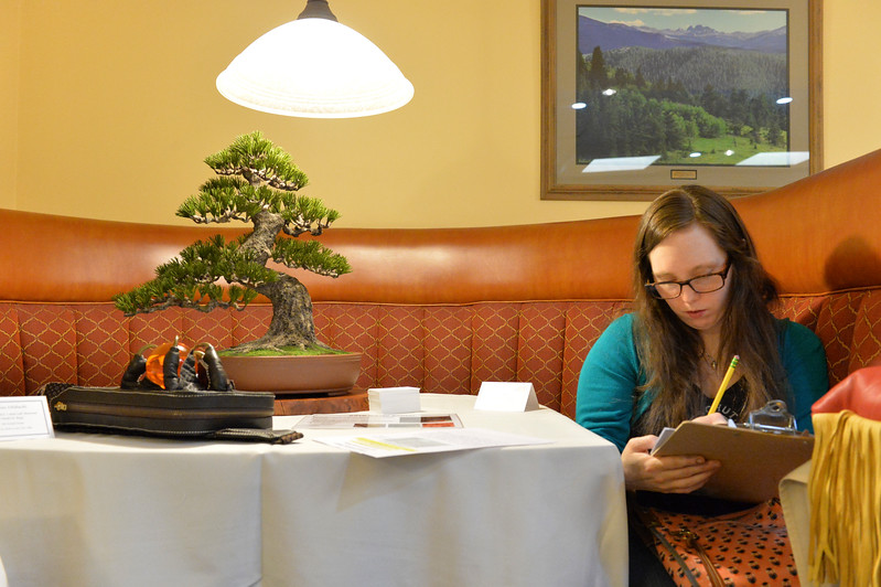 Justin Sheely | The Sheridan Press<br /> Show judge Annie Libertini writes notes next to a leather Goyo Matsu (pine white) Bonsai tree made by japanese crafter Takeshi Yonezawa during the annual Rocky Mountain Leather Crafters Trade Show Friday at the Sheridan Inn Convention Center.